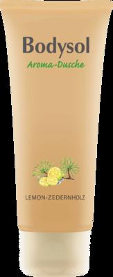 Bodysol Aroma Duschgel Lemon Zedernholz 250 ml